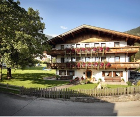 Apartments in Ried im Zillertal 734