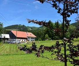 Am Hof Jungholz