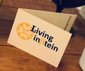 Living inStein