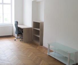 Wohnung in Kremser Innenstadt