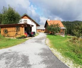 Ferienhaus FRIEDLHOF