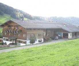 Bauernhof Bilgeri