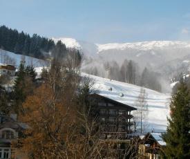 Modern Apartment in Schulstrasse Near Lake and Ski Lifts