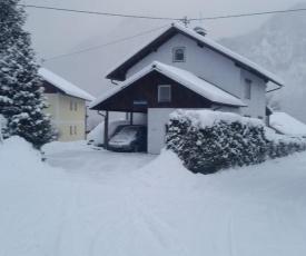 Ferienhaus-Cerny