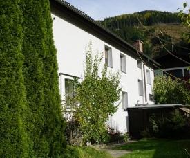 Ferienhaus Schareck