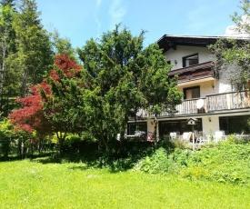 The Treehouse Backpacker Hostel