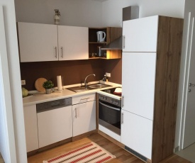 Apartment Vienna 1