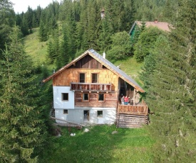 Ferienhaus Flattnitz