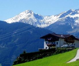 Apartments in Stummerberg/Zillertal 773